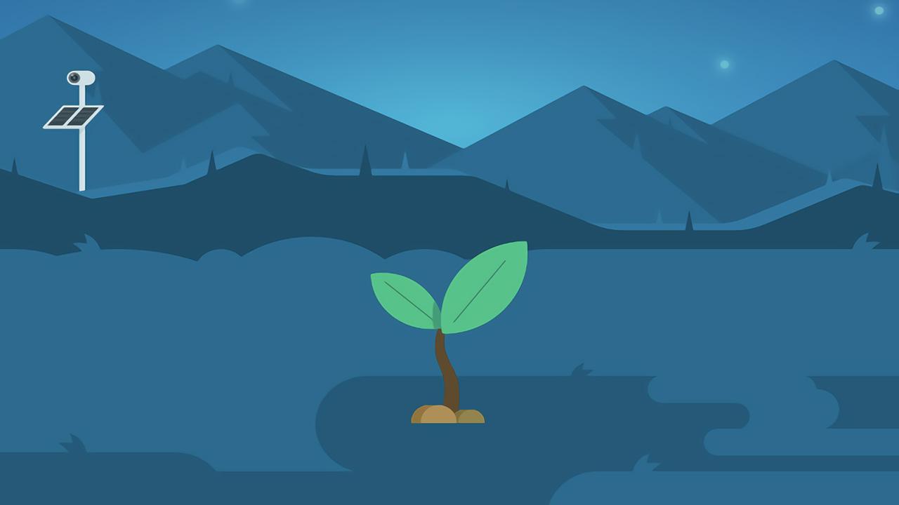 蚂蚁森林功能的主要价值,是用户激活还是用户留存?--运营喵的世界